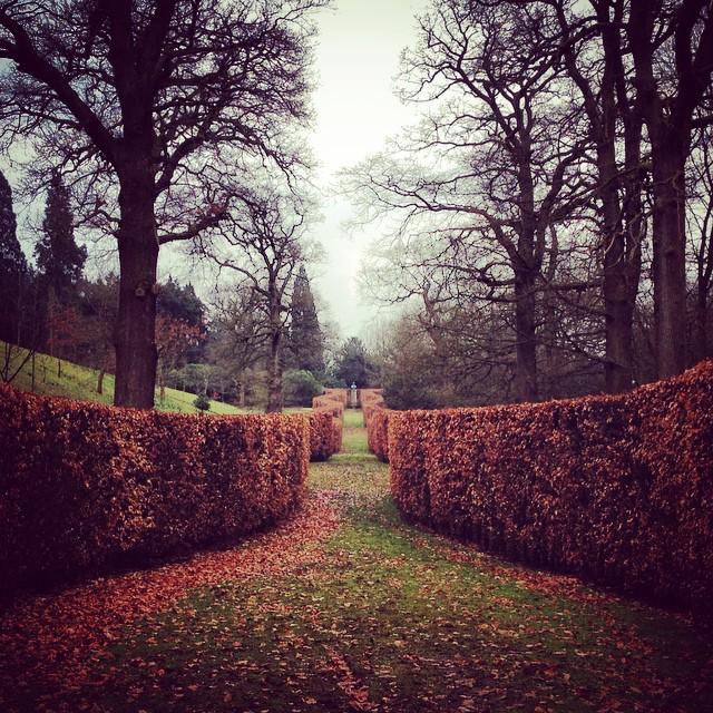 Chatsworth House #chatsworth #gardenphotography