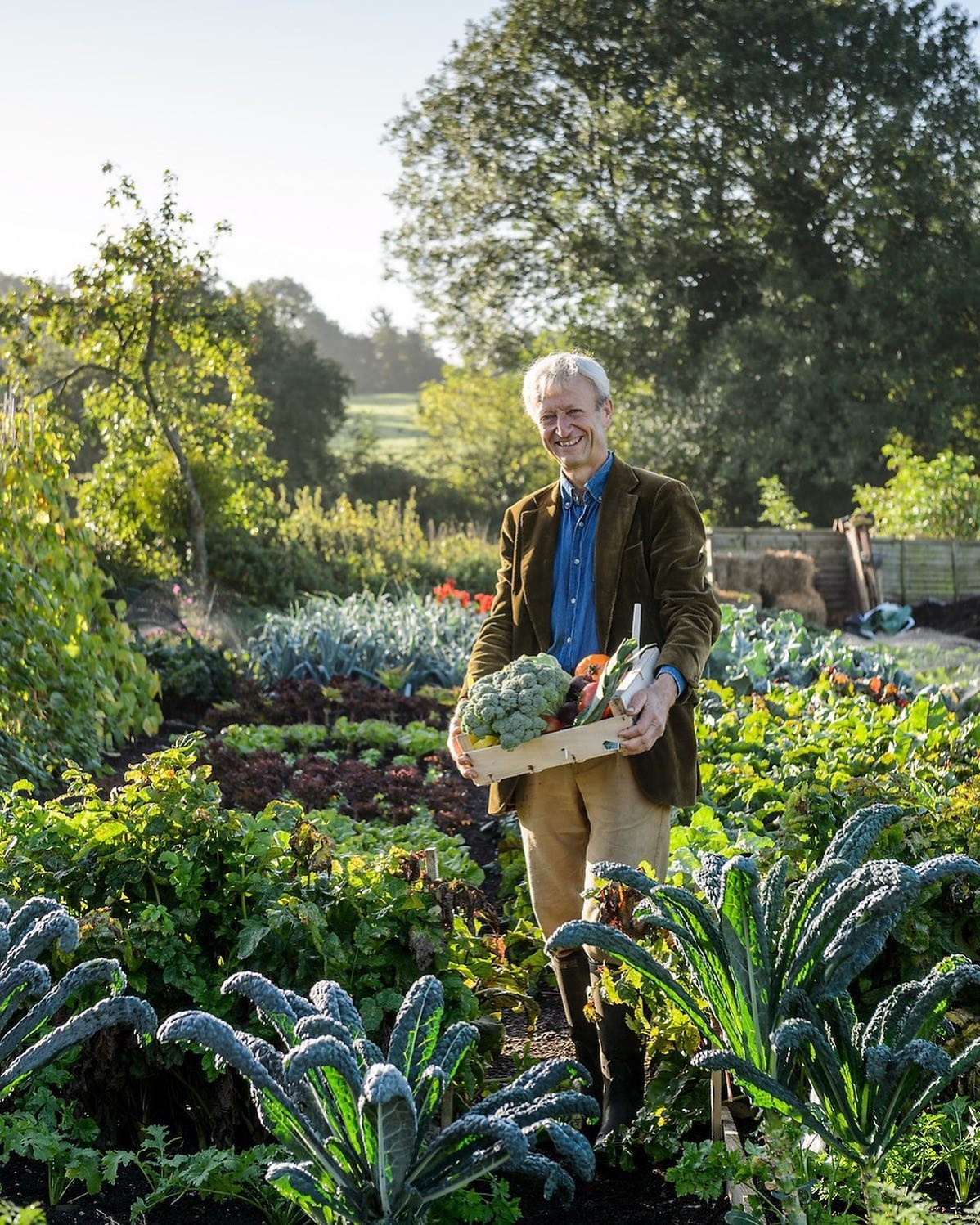 A favourite portrait of Charles Dowding at first light @charles_dowding in his wonderful Veg Garden...#charlesdowding #portraitphotographer #portraitphotography #gardenphotographer #gardenphotography #growyourown #vegetablegardens #vegetablegarden #nikonphotography #nikon #nikonphotographer #nodiggarden #nodig