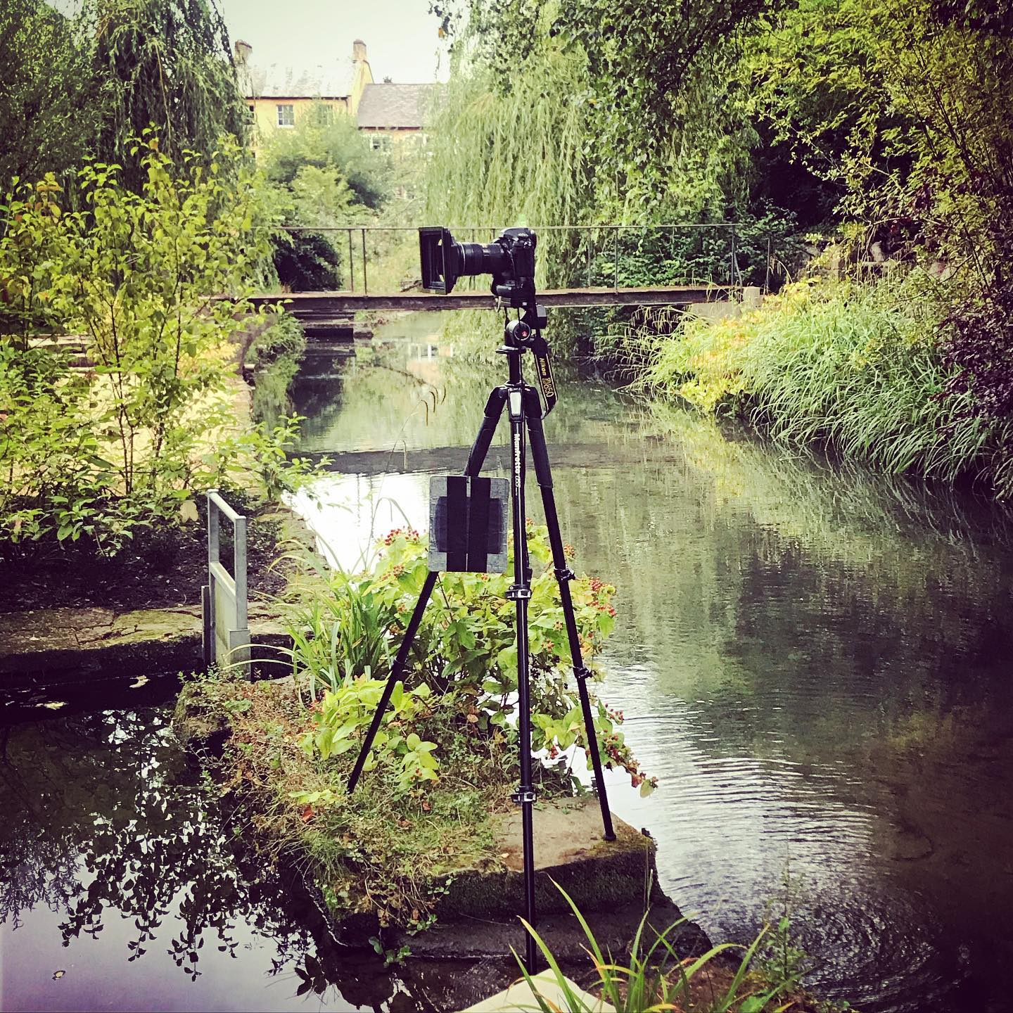 Today's precarious set up ...#garden #gardenphotography #gardenphotographer #nikond850 #precarioussetup #precarioustripod #locationphotography #locationphotographer #behindthescenes #nikonphotography #nikon #nikonphoto