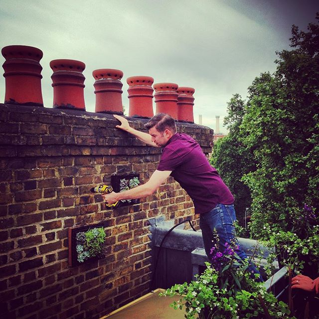 Succulent Frames being positioned on a Roof Terrace #london #gardenphotography