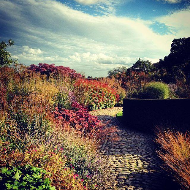 Piet Oudolf at Bury Court #pietoudolf #Burycourt #gardenphotography
