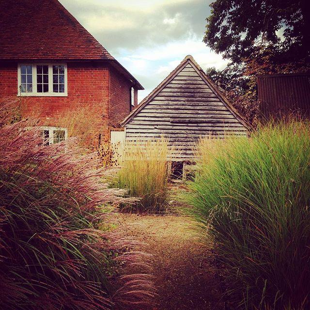 Bury Court #gardenphotography #Burycourt
