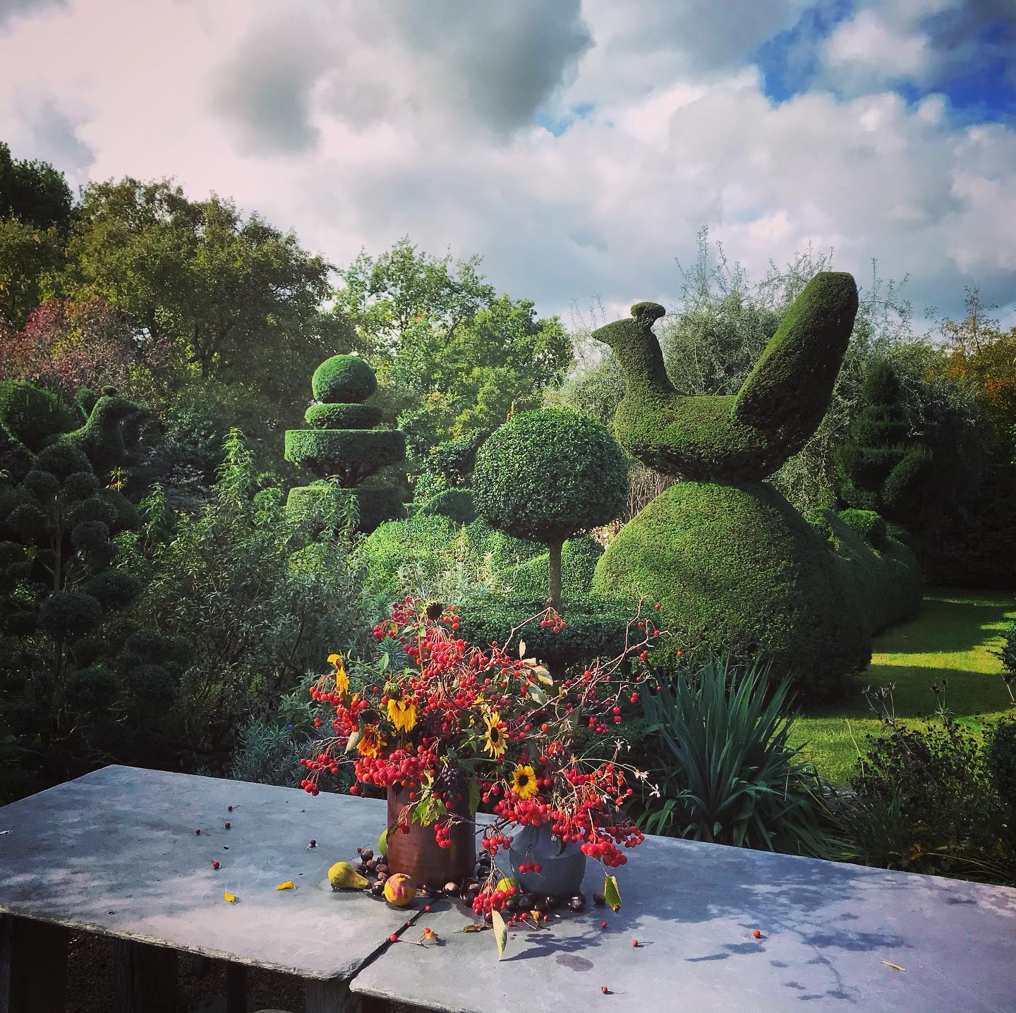 Wonderful day yesterday with #charlottemolesworth shooting a new exciting project with @marianboswall ...#charlottemolesworth #topiarygarden #topiary #gardenphotography #gardenphotoshoot #gardenphotographer #marianboswalllandscapes #autumngarden #autumn