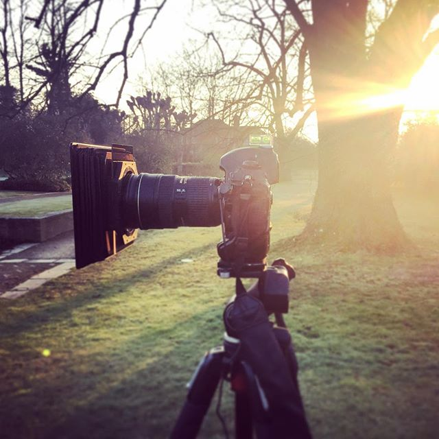 Sunrise behind the camera #gardenphotography #behindthecamera #sunrise