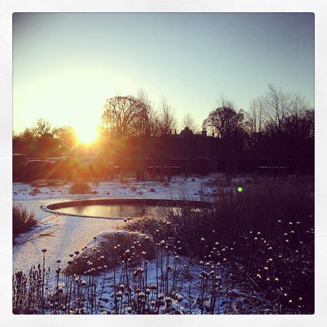 Sunrise at Scampston Walled Garden, thanks @metoffice for getting the forecast spot on ! @lucy.bellamy #scampstonwalledgarden #gardenphotography #metoffice #snow #yorkshire #pietoudolf