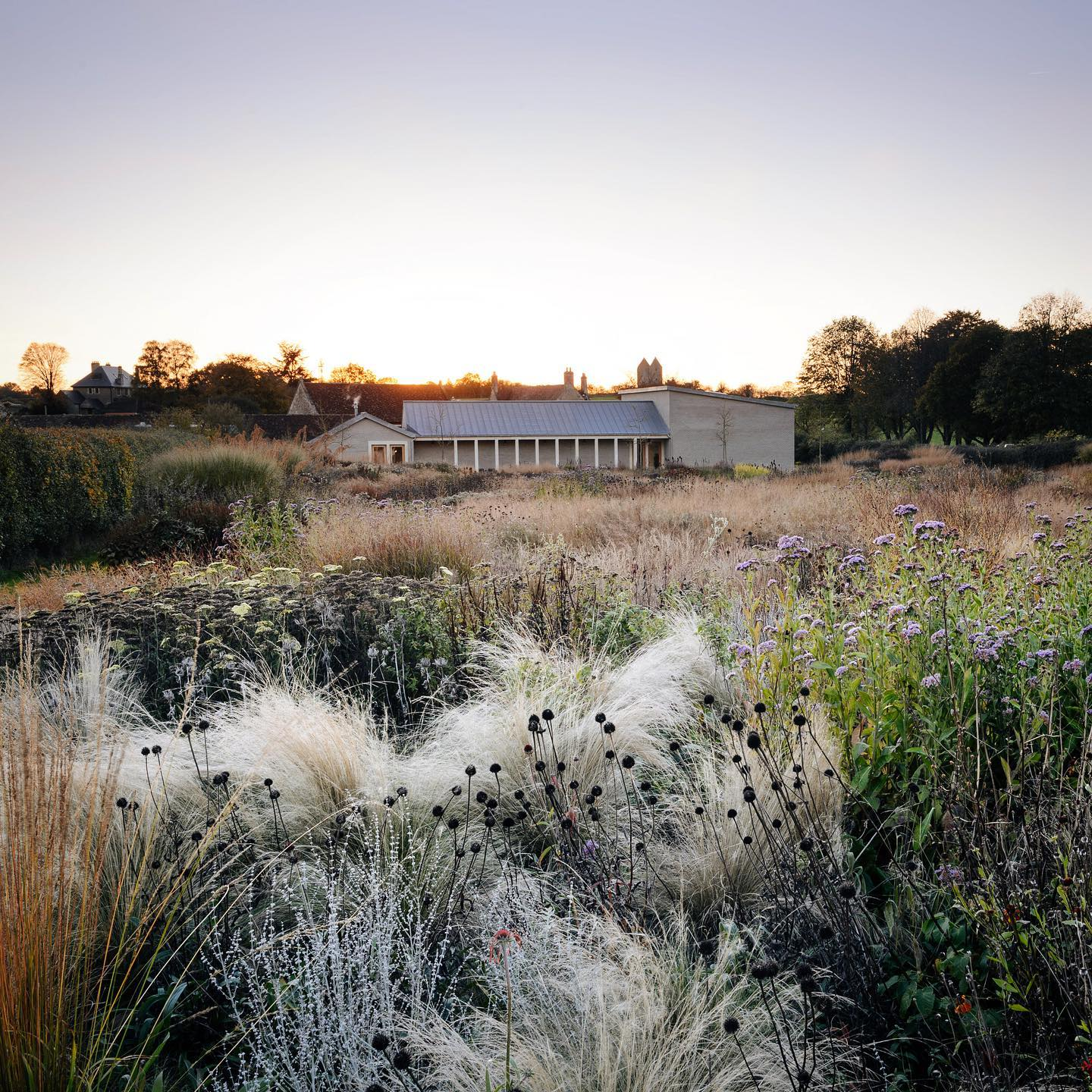 The beautiful soft autumn tones at sunset @hauserwirthsomerset .. @pietoudolf .The garden is open Wednesday - Friday 11am -3pm for those living locally through their booking system online.#hauserandwirthsomerset #pietoudolf #oudolffield #plantingtheoudolfgardens #filbertpress #gardenphotography #gardenphotographer #somersetgarden #autumngarden #lateperennials #nikonphotography #nikon #nikonphotographer