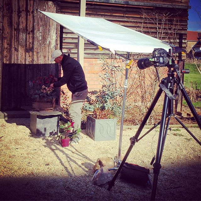 Behind the Scenes, shooting containers with @bob_purnell #gardenphotography #containers #behindthescenes