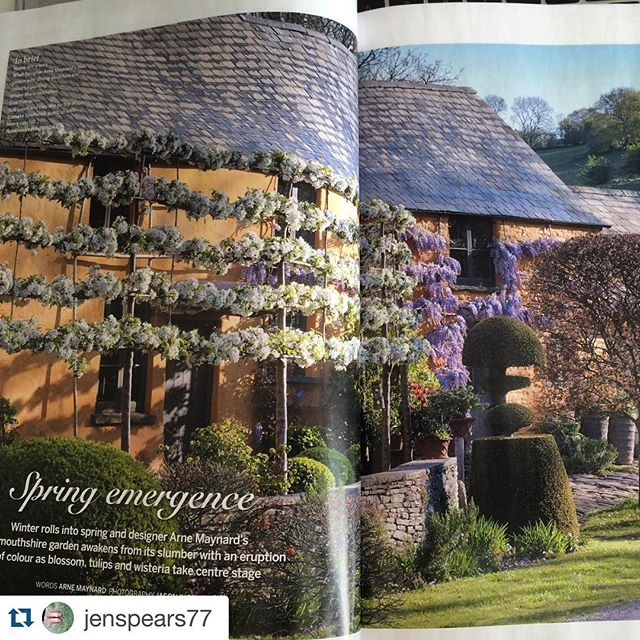 #Repost @jenspears77 with @repostapp.・・・Gorgeous feature on @arnemaynardgardendesign in @gardens_illustrated this month. Great shots by @jasoningram as ever. #Spring #wisteria #malusevereste #alltybela #arnemaynard
