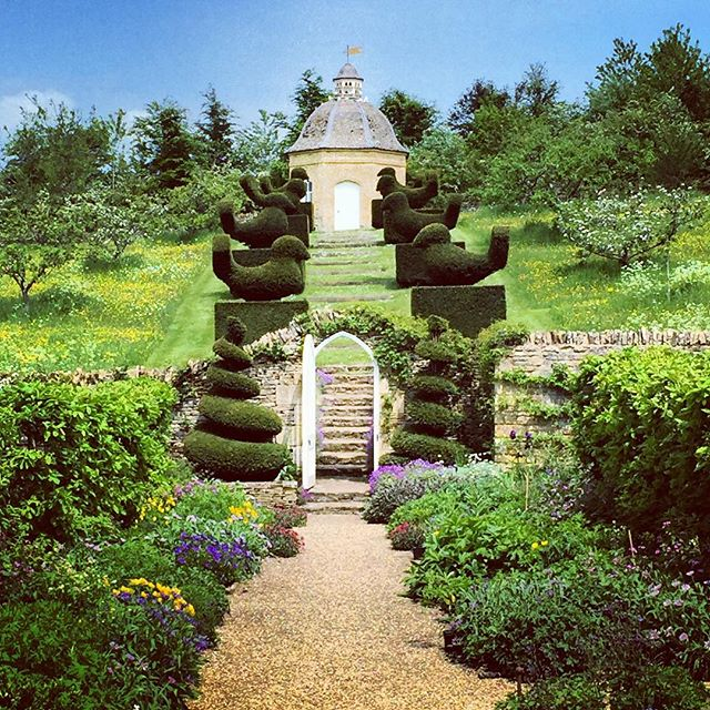 View of Rockcliffe Garden , perfect lines and topiary #topiary #rockcliffegardens #gardenphotography