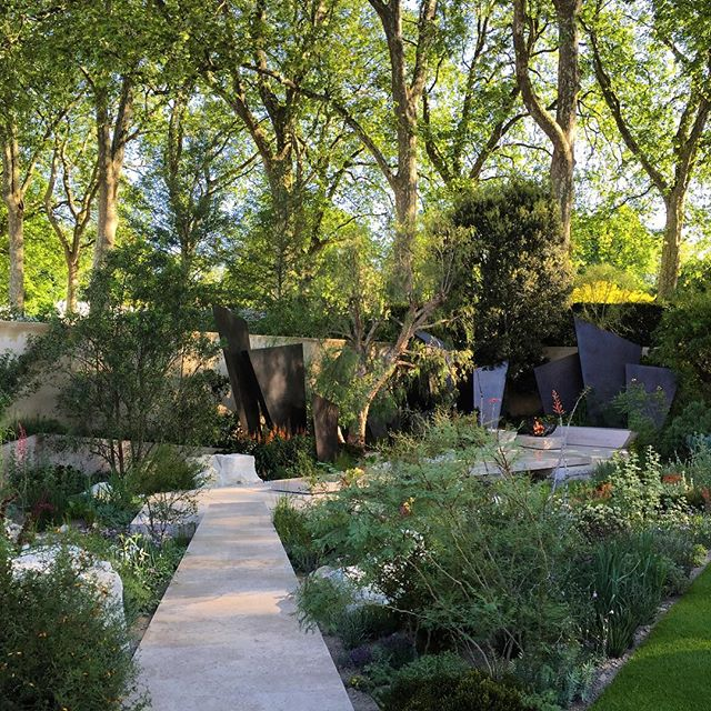 The Telegraph Garden designed by Andy Sturgeon #rhschelsea #telegraph #telegraphgarden #andysturgeon #gardenphotography