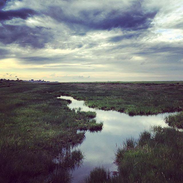 Cleethorpes Salt Marsh #cleethorpes #saltmarshes