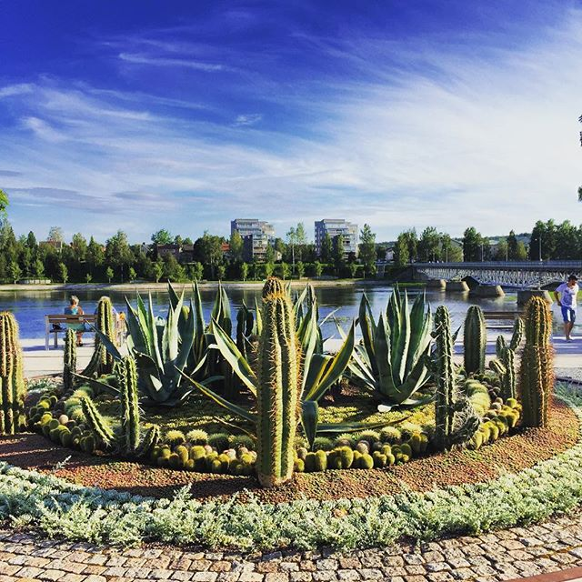 Skellefteå Park designed by Ulf Nordfjell #sweden #skellefteåparken #ulfnordfjell #gardenphotography