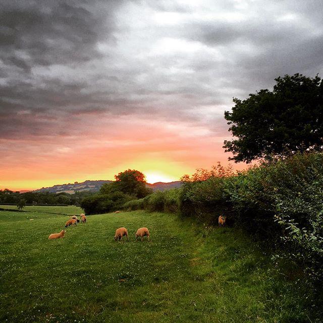 Sunrise Monmouthshire #sunrise #monmouthshire