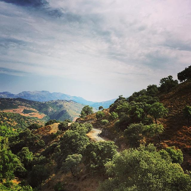 Mountain path Andalucia #andalucia #mountainpath #iberianpig