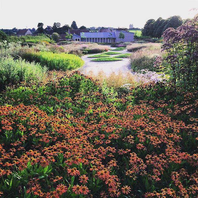 Oudolf Field #hauserandwirth #gardenphotography #oudolffield #pietoudolf