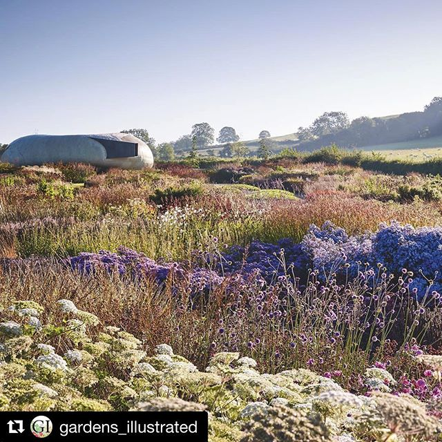 #Repost @gardens_illustrated with @repostapp・・・Visit the @gardens_illustrated website, gardensillustrated.com and find 15 of our favourite gardens to visit for art, literature, science, politics and music. This garden was designed by Piet Oudolf for @hauserwirth gallery in Somerset. Photo by @jasoningram