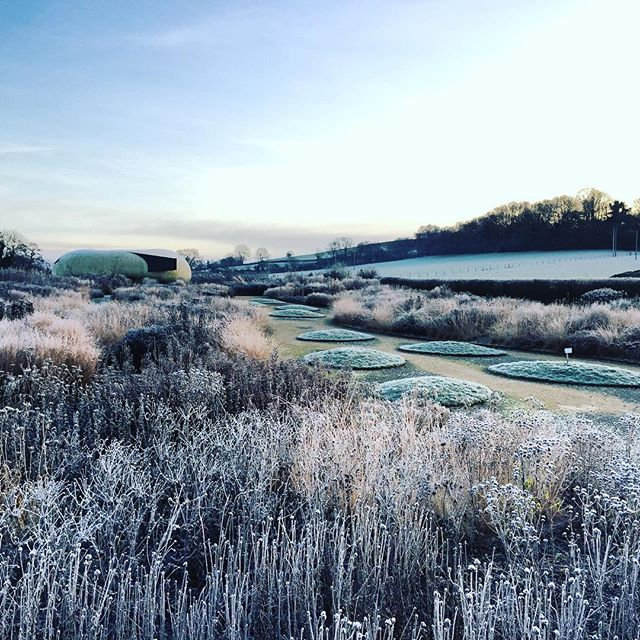 Oudolf Field at Hauser & Wirth #hauserandwirthsomerset #dursladefarm #pietoudolf #oudolffield #gardenphotography #frost #wintergarden