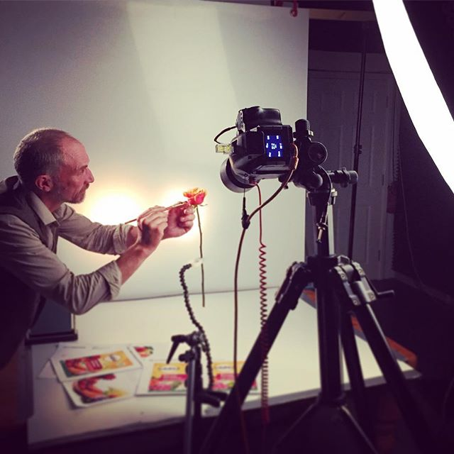 Precision in the studio today with @bob_purnell #gardenphotography #advertising