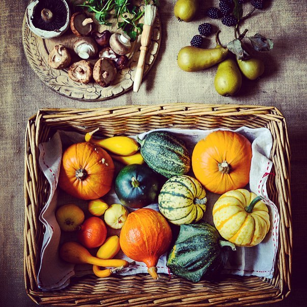 Beautiful Autumn harvest #squashes #pears #blackberries #mushrooms #autumn #autumnharvest