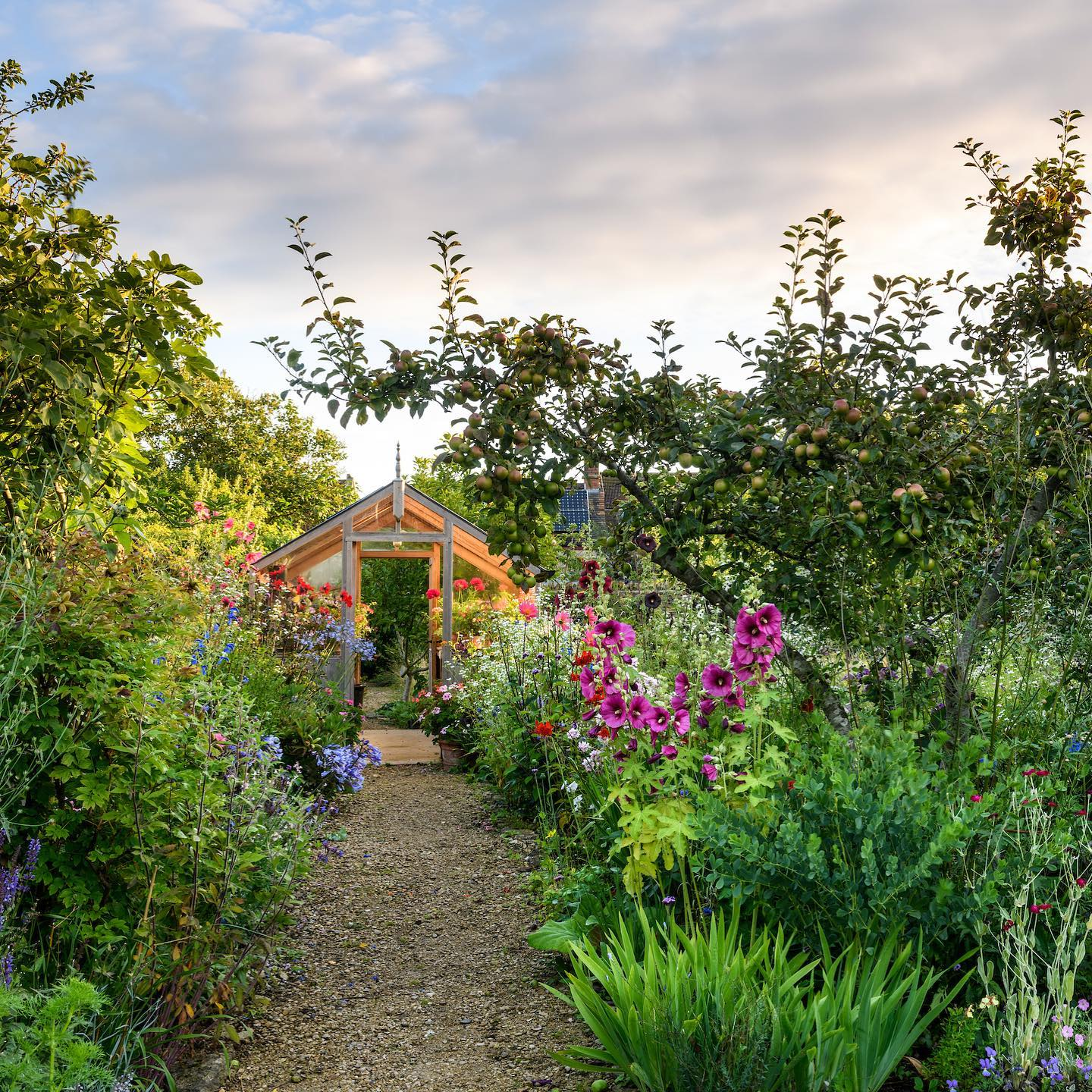 Mary Keen's beautiful garden shot for @gardens_illustrated , great article by @nonmorrisgardens...#gardensillustrated #gardenphotography #gardenphotographer #englishgardens #summergarden #nikonphotography #nikonphoto #nikonphotographer