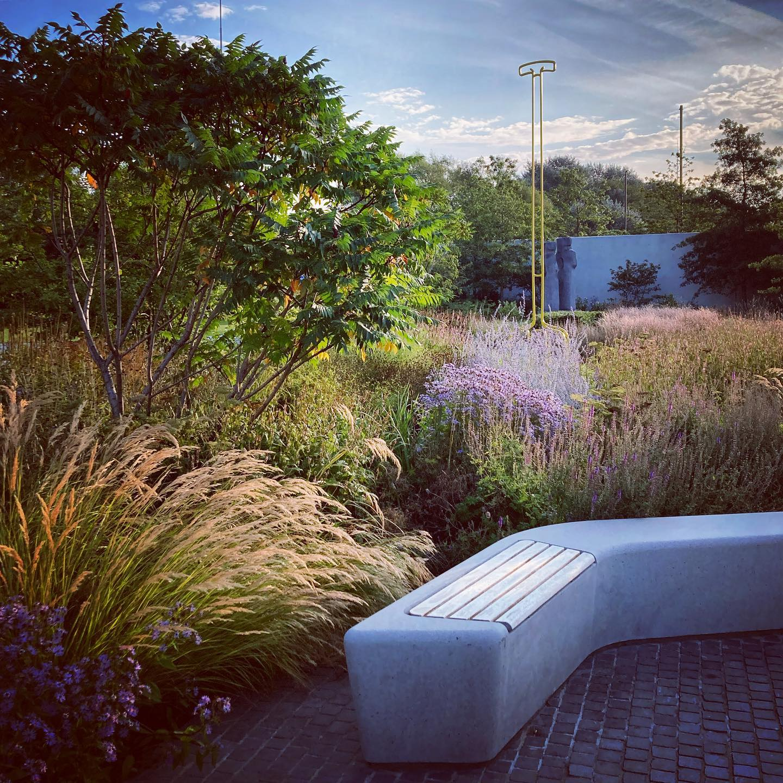 First light in the Hepworth Wakefield Garden @hepworthwakefield @tomstuartsmith @katymerrington ...#hepworthwakefield #tomstuartsmith #tomstuartsmithstudio #gardenphotography #gardenphotographer #shotoniphone #septembergarden