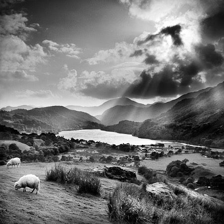 My print shop has finally arrived, mainly personal Black & White work shot over the last 20 years. This is one of my favourites from Snowdonia. Link in my bio #snowdonia #nantgwynant #blackandwhitephoto #landscapephotography #Northwales #jasoningramprints #rolleiflex #panf #filmphotography