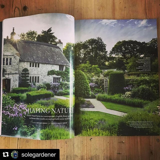 #Repost @solegardener with @get_repost・・・Great to see South Wood Farm in @gardens_illustrated when I got home tonight! Stunning photos by @jasoningram and @mat.reese 's words really capture the feel of the place.@arnemaynardgardendesign @cliveapotter77 @guygardens #southwoodfarm #gardensillustrated #arnemaynardgardendesign