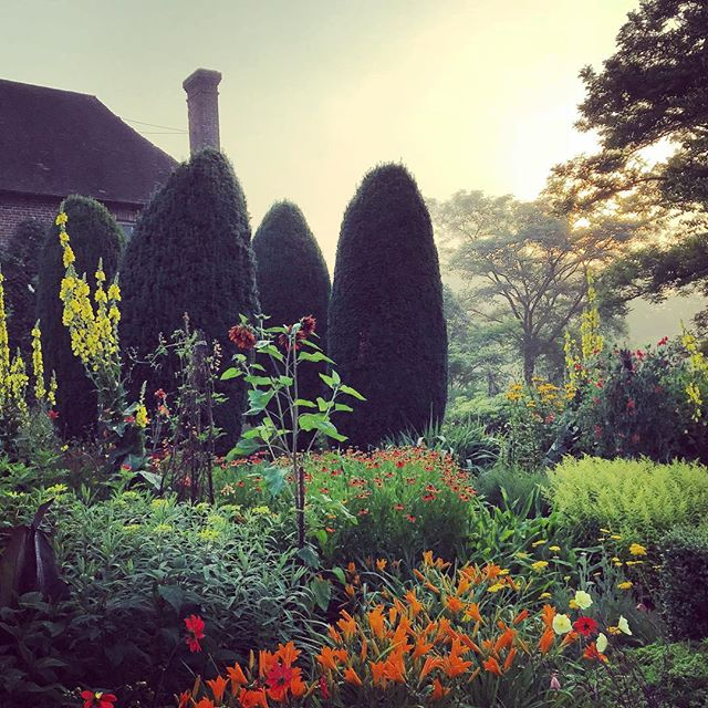 Sissinghurst at first light #gardenphotography #gardenphotographer #sissinghurst #sissinghurstcastle #firstlight