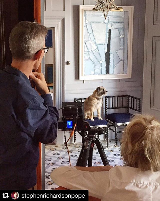 #Repost @stephenrichardsonpope with @get_repost・・・Spot Light on Oscar Dog who's making his modelling debut for our article in August / September edition of @houseandgardenuk Magazine!...What a super star, don't you agree?..Behind the scenes photographed by @jasoningram and styled by the divine @liz_elliot_hg ..#interiordesign #design #interior #architecture #art #seaside #home #instagood #photography #photooftheday #garden #superstar #model #houseandgarden @andrew_buchanan