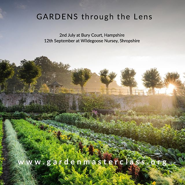My course dates are up and live for this year with @gardenmasterclass . Two new exciting venues for me, 2nd July at Bury Court and 12th September @wildegoosenursery . In association with @gardens_illustrated and supported by @alitex_  #gardenphotography #gardenphotographer #gardenphotographycourse #wildegoosenursery #burycourt #alitex #gardenmasterclass #gardensillustrated