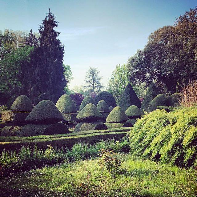 Beautiful Villa Pisani Scalabrin #villapisaniscalabrin #italy #gardenphotographer #gardenphotography