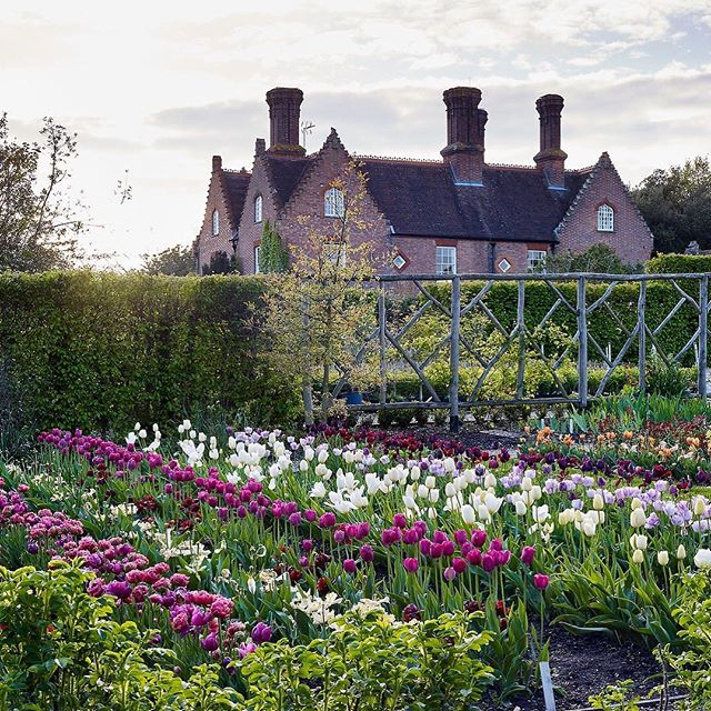 The Cutting Garden at Sissinghurst #gardenphotography #gardenphotographer #sissinghurst #sissinghurstcastle #sissinghurstcastlegarden #cutflowers #cutflowergarden #nationaltrustgardens #nationaltrust