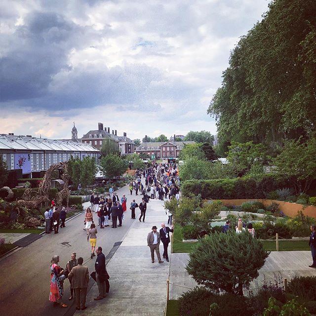 Main Avenue @rhs_chelseaflowershow #rhschelsea2019 #gardenphotographer #gardenphotography #pressday #chelseaflowershow2019