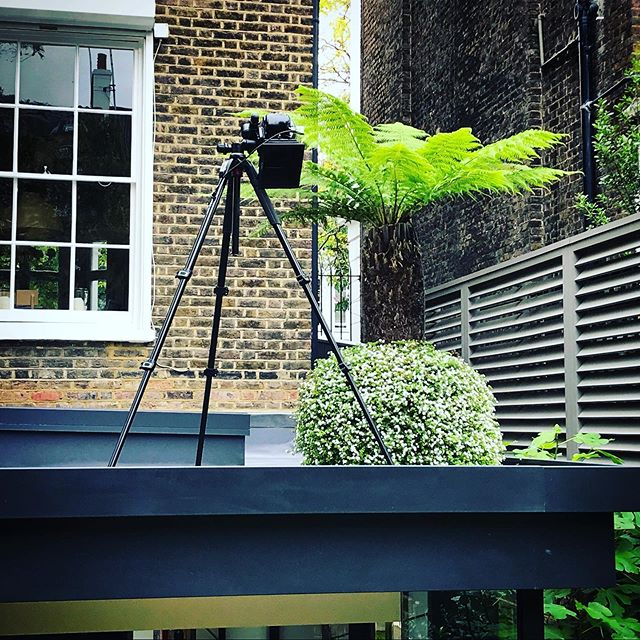 Today's slightly precarious angle #gardenphotography #gardenphotographer #locationphotographer #phaseonep45plus #phaseone