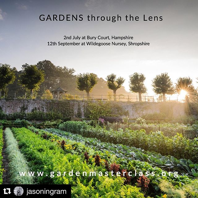 Last few places available for my Garden Photography Course on 2nd July at Bury Court with @gardenmasterclass https://www.tickettailor.com/events/gardenmasterclass/217471 #gardenphotography #gardenphotographer #photographycourse #gardenphotographycourse #gardenmasterclass