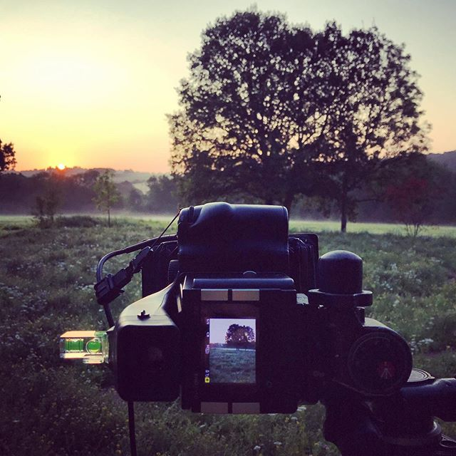 Lovely morning shoot, the perfect sunrise #gardenphotography #gardenphotographer #sunrise #phaseone #marianboswalllandscapes #phaseonephoto