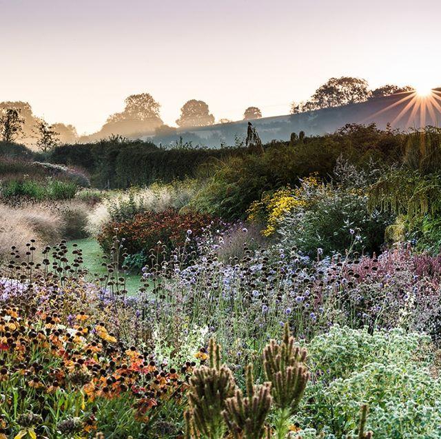 Sunrise over The Oudolf Gardens @hauserwirthsomerset #gardenphotography #gardenphotographer #pietoudolf #plantingtheoudolfgardens #hauserandwirth #hauserandwirthsomerset #dursladefarm #sunrise #oudolffield #oudolfgardens #nikon #nikond4s