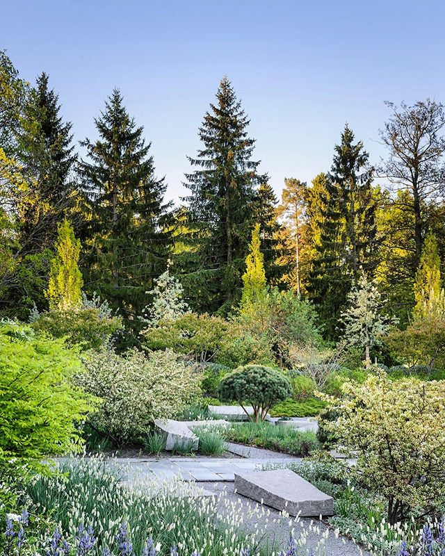 This was shot three years ago for a book I have been working on with the great Swedish Landscape Designer Ulf Nordfjell @nordfjellcollection for the past couple of years .This garden is in the Stockholm archipelago, I love the seamless transition into the nature that surrounds it #sweden #gardenphotography #gardenphotographer #ulfnordfjell #swedishgarden #nikonphotography #nikonphotographer #thenature #nature #swedishlandscapedesign #swedishlandscpe
